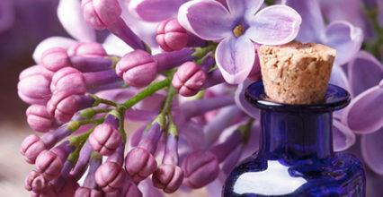 3 lợi ích của máy tạo mùi hương bạn nên biết