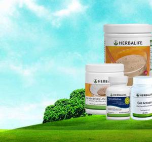 Sữa giảm cân Herbalife có thực sự tốt không